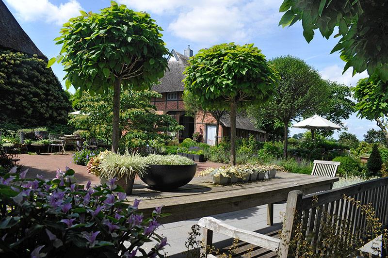 Im Garten Graf in Sprangsrade