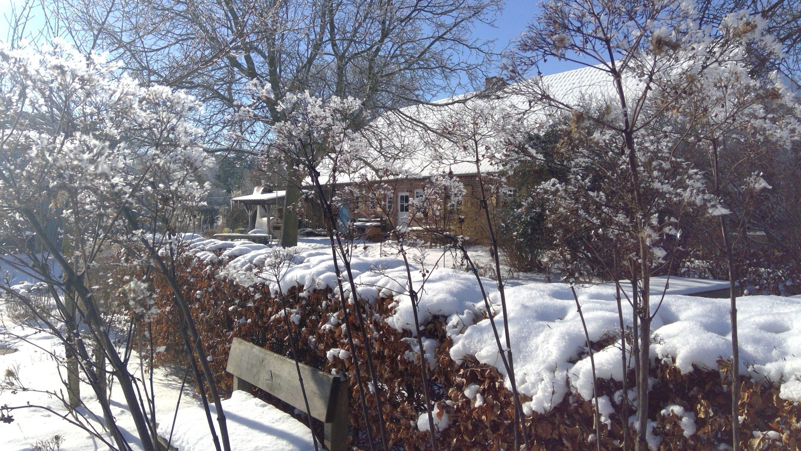 Drispeth im Winter