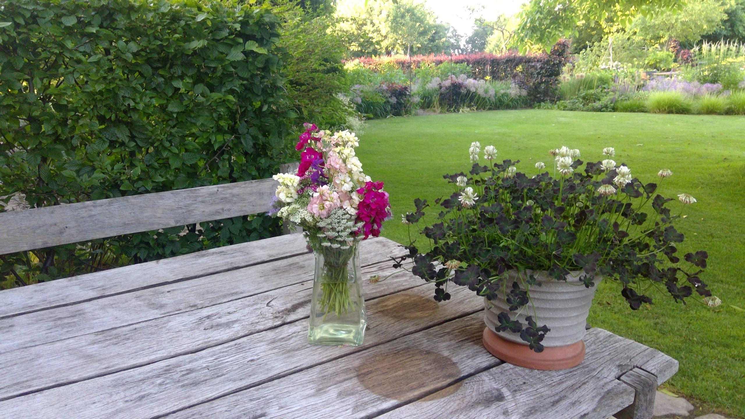 Pflanzenstillleben am Sitzplatz an der Küche